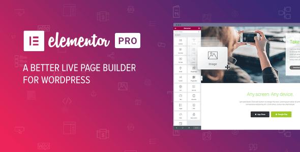 Elementor Pro 2.8.2– WordPress页面构建器